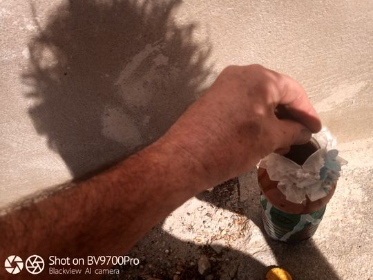 Photos O (avec l'ombre de sa coiffure post-confinement, dans l'attente d'un rendez-vous chez son coiffeur débordé :-)