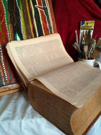 mon vieux dictionnaire de grec, devant ma repeinture en cours