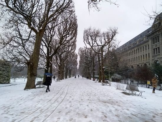 neige 7-min