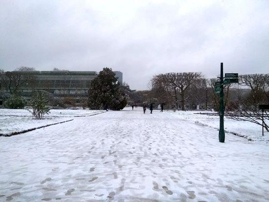 neige 8-min